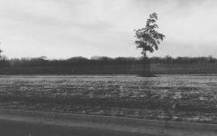 Through the seasons: a drive around Kansas