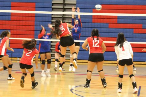 Volleyball defeats South